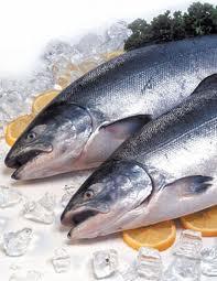 Pescado sobre rodajas de naranjas y hielo. El pescado es una buena fuente de grasas beneficiosas para el organismo