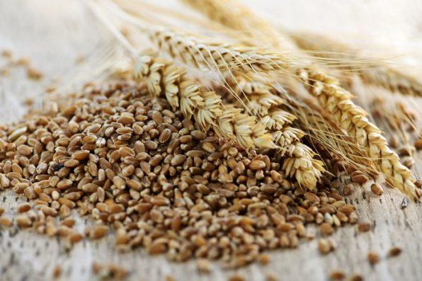 Espigas de trigo sobre un montón de salvado de trigo